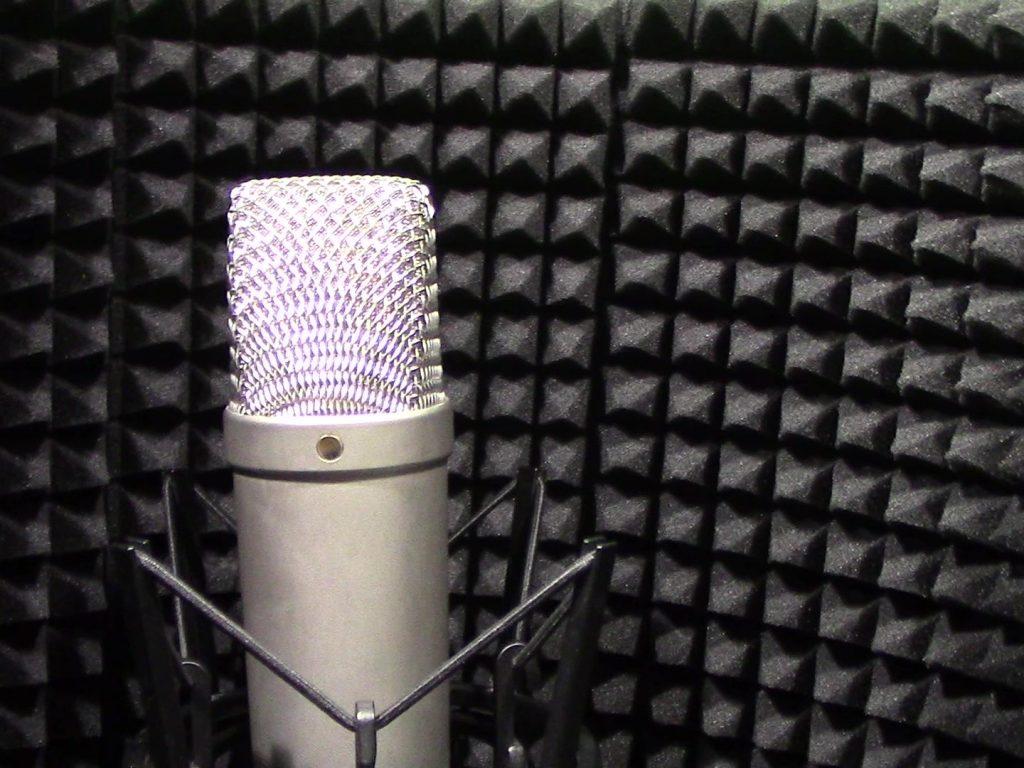 microfono dentro schermo vocal booth